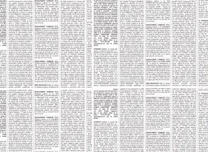 anunturi ziar camera de comert si industrie neamt